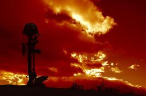 Fallen-soldier